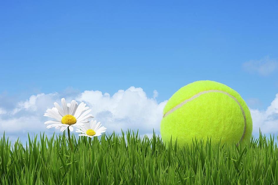 tennis-ball-andrew-dernie.jpg